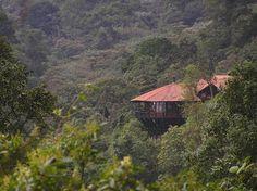 Parque Natural Chicaque (Chicaque National Park) - Bogota