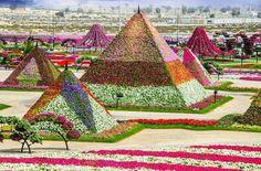 Un jardín único en el mundo, en Dubai....dignó de ver
