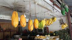 Thailand, Phuket Papaya's