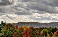 The color is hanging on in Endicott, NY - 10/14/2014