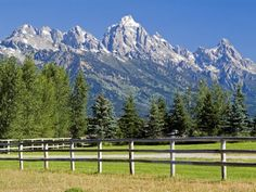 The pasture of my Wyoming ranch!!