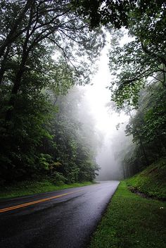 Stafford, Virginia: Loved the smell of the trees! Hiking Places, Places To Travel, Quantico Va, Stafford Virginia, List Of Cities, The Road Not Taken, Virginia Is For Lovers, Virginia Homes, Richmond Virginia