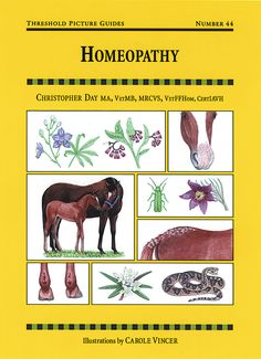 Threshold Picture Guide No. 44 Homeopathy by Chris Day   Quiller Publishing. This illustrated guide shows how to choose and use tried-and-tested homeopathic remedies for horses and ponies, providing treatment guidelines for a wide range of common ailments and first aid applications. #horse #pony #firstaid #health #homeopathy