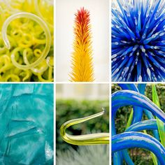 Are There Glass Snakes in Dale Chihuly's Fragile Eden?