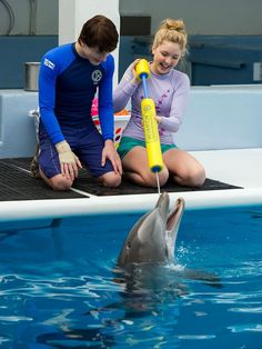 New photos of Cozi Zuehlsdorff and Nathan Gamble in Dolphin Tale 2