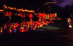 RISE of the Jack O'Lanterns at Descanso Gardens L.A.