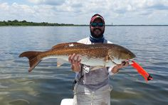 Flats Fishing for Reds in Florida! Mosquito Lagoon and the Indian River! #ThrasherLures #Redfish #flatsfishing #TightLinesColdBeers #Florida #FloridaFishing