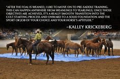 Kalley's 2009 Graduating Class of Pre-Saddle Trained Young Horses