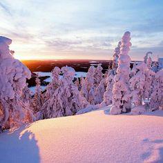Pretty snow view