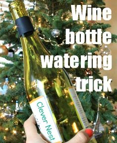 Water a Christmas tree using an empty wine bottle -Clever Nest