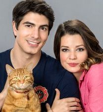 Hallmark movie with Brandon Routh and cat