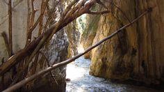 Rio Chillar Nerja Nerja, Rio, Plants, Natural Swimming Pools, Paths, Adventure, Viajes, Planters, Plant
