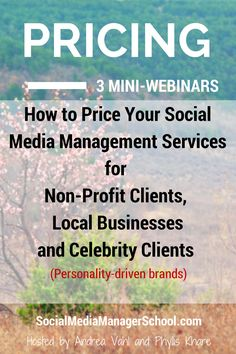 Are you worried that you are leaving money on the table when you price your social media consulting service?  Or are you overpriced and turning business away?