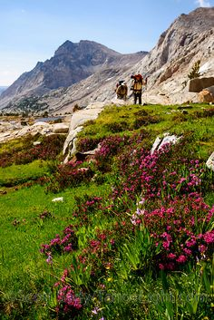 High Sierra backpacking in Humphreys Basin and Piute Pass