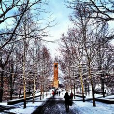 Cornell University, Ithaca, NY in the Finger Lakes region. Imagine beautiful spring thaw and crisp fall nights. In between there's snow! An Ivy league school.