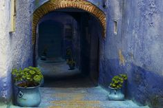 landscapelifescape:  Chefchaouen, Morocco the blue city (by cherry bharati)