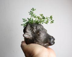 Little Vintage Bull Head Planter by shavingkitsuppplies on Etsy, $30.00
