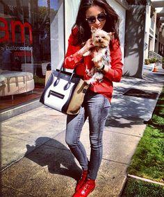 Red Jacket Celine Bag
