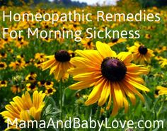 Homeopathic Remedies for Morning Sickness.  #homeopathicremedies #morningsickness