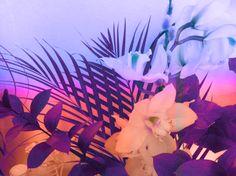 Tropical floral print design. Samantha Warren