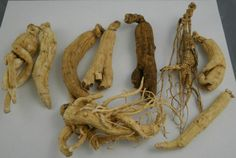 Some people think taking Ginseng will help you lose weight, run faster, fight disease and a whole other bunch of gnarly stuff.    Not quite....but it is a nice pick me up.  I myself take siberian...