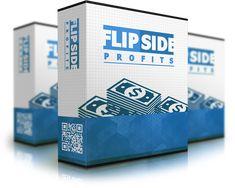 Flipside Profits  Techniques