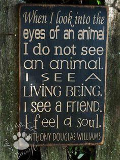 I feel the same way....so true!!! :)