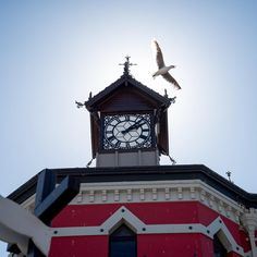 That moment when everything falls into place clock tower, cape town, south africa, red clock tower, red, perfect moment, photography Red Clock, That Moment When, Wanderlust Travel, Cape Town, Fashion Addict, Fashion Bags, Big Ben, South Africa, Nature Photography