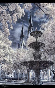 Lafayette Square Fountain :: Savannah, GA
