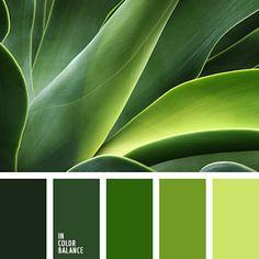 Google Color Celeste Green Pallete Schemes Palettes