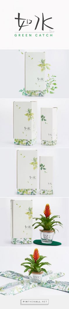 Green Catch plant packaging branding project by Box Brand Design Co. Source: Daily Package Design Inspiration. Pin curated by #SFields99 #packaging #design