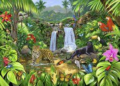 Rainforest Harmony