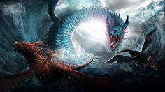 Dragon fight wallpaper