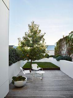 Landscape Elements, Landscape Design, Garden Design, Victorian Terrace, Victorian Era, Front Rooms, Outdoor Living, Outdoor Decor, Outdoor Furniture