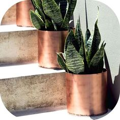 """Planters  """"Copper pots  #getgorgeousonline.com"""" Photo taken by @getgorgeous on Instagram, pinned via the InstaPin iOS App! http://www.instapinapp.com (08/12/2015)"""