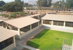 Facultad de Zootecnia-Programa de Investigación y proyección Social en Cerdos