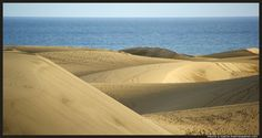 The dunes of Maspalomas are largely made up of crushed shells  (Las Dunas, Gran Canaria, Spain)