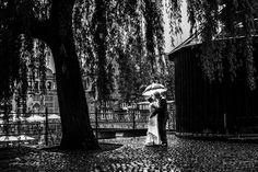 Regenhochzeit in Lüneburg - Hochzeitsfotograf Hamburg Lüneburg Bremen Hannover