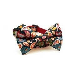 SooperTramp Dog Bow Tie Collar | Colorful Paisley