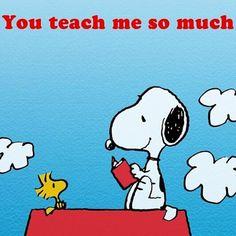 tribute to teachers-- https://fbcdn-sphotos-d-a.akamaihd.net/hphotos-ak-prn2/t1.0-9/10349893_743786342338791_3398628015134502495_n.png