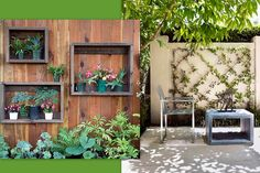 Vertical Garden made with wooden boxes