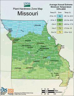 Hardiness zones in Missouri - List of Broadleaf Evergreens