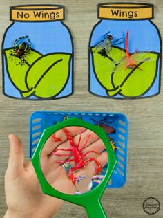 Looking for awesome Bug Activities for preschool? This awesome set is a mix of cute preschool bug crafts and educational activities for your math and literacy centers. Preschool Bug Theme, Preschool Science, Preschool Lessons, Science Activities, Preschool Activities, Preschool Printables, Science Classroom, Science Education, Science Centers
