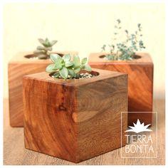 Maceta de madera maciza, recuperada. Con terminaciones naturales. Ideal para cactus y suculentas.