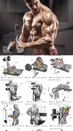 5 best Triceps Workout