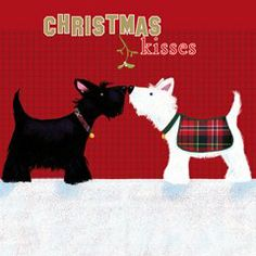 Tartan Westies Charity Christmas 10 Card Pack: Amazon.co.uk: Kitchen & Home