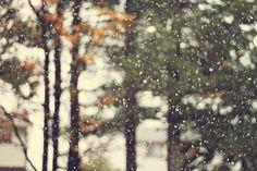A crisp Autumn breeze. ❤️