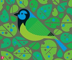 green jay limited edition print by beethings on Etsy
