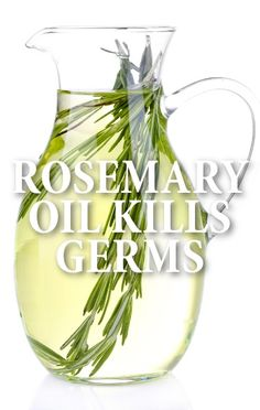 Dr. Oz had a few doctors share their secrets for staying healthy and avoiding getting sick, like Rosemary Essential Oil.  http://www.recapo.com/dr-oz/dr-oz-natural-remedies/dr-oz-avoid-getting-sick-rosemary-essential-oil-brazil-nuts/