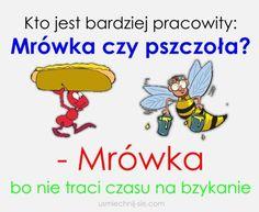 #humor #smieszne #pszczola #mrowka Funny Mems, Motto, Memes, Haha, Funny Quotes, Smile, Jokes, Humor, Good Morning